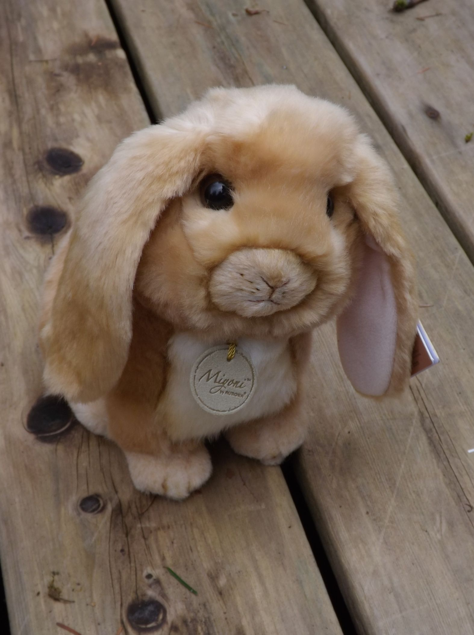 A26171-Stuffed-Lop-Eared-Tan-Rabbit
