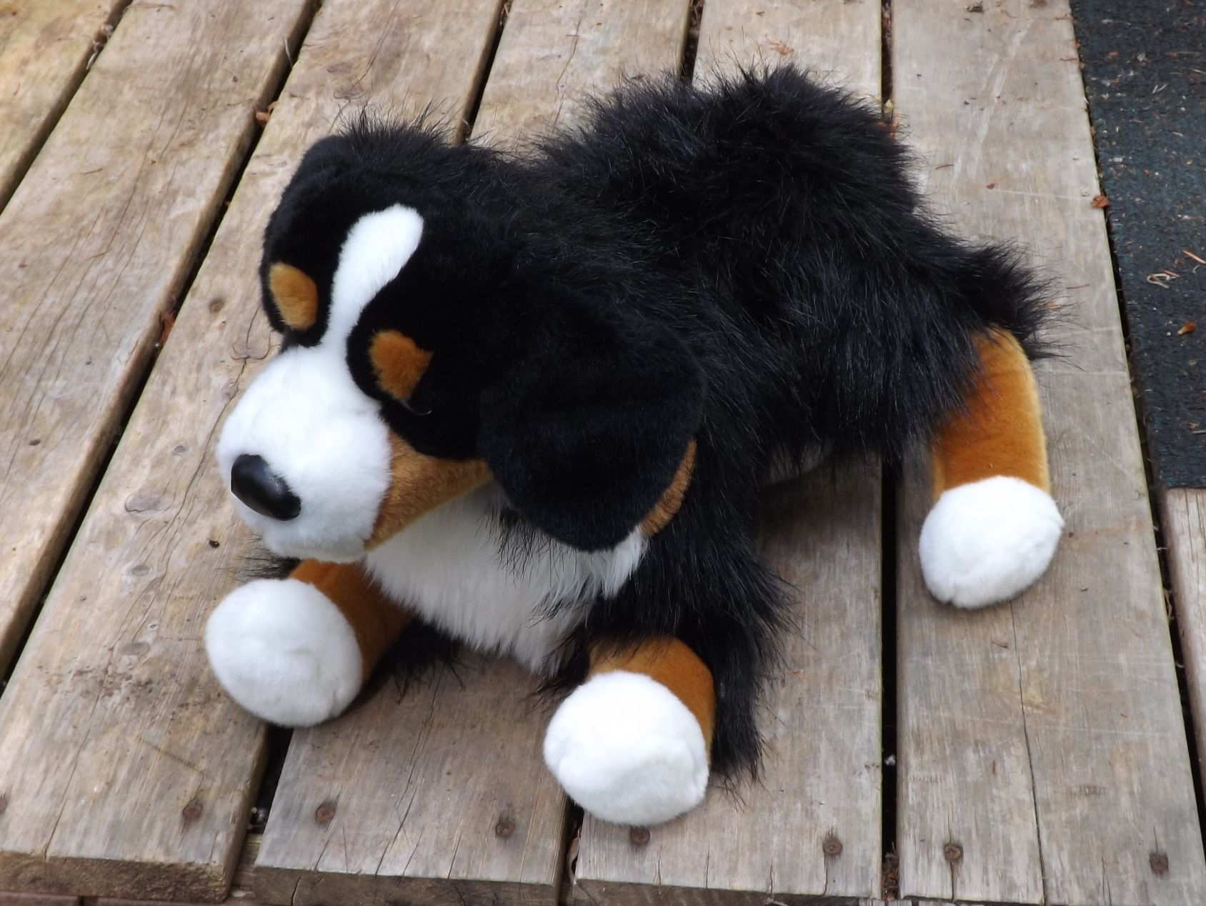 D1851-Stuffed-Bernese-Mtn-Dog