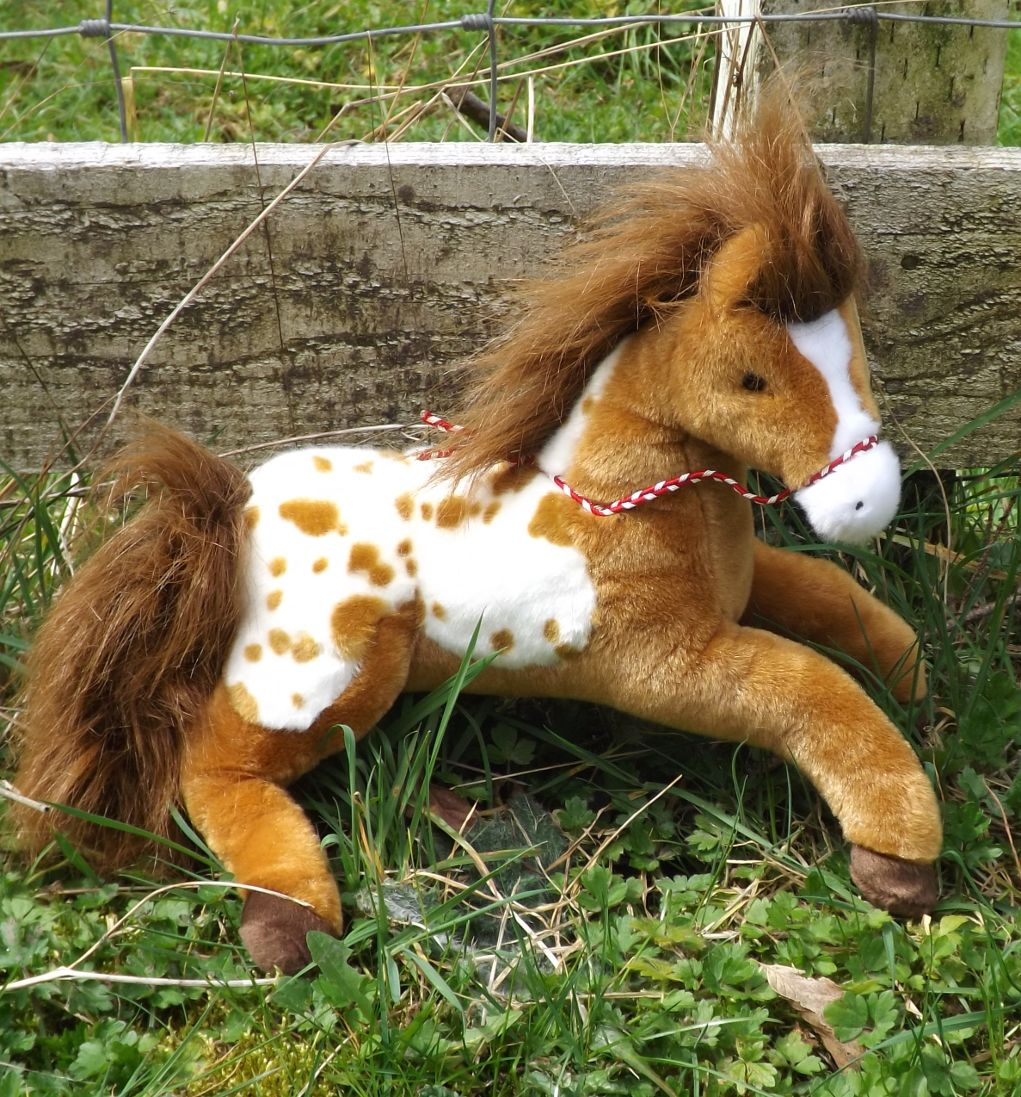 D1982-Glisten-Golden-Appaloosa