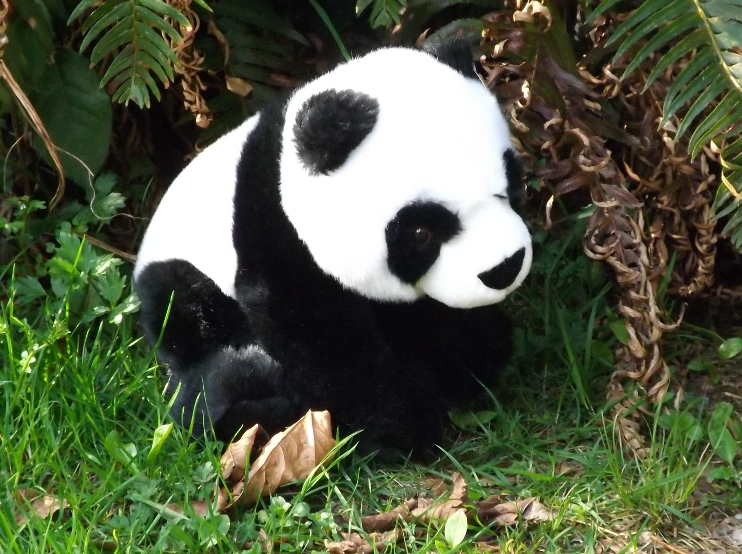 FA41750-Panda-Bear-Stuffed-Animal
