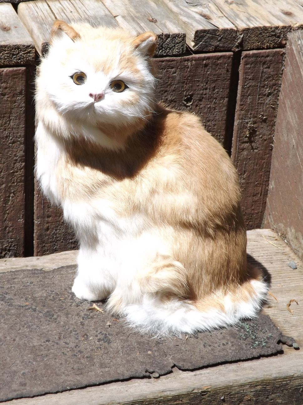 GHC274T-Sitting-Tan-Realistic-Cat-with-Real-Fur