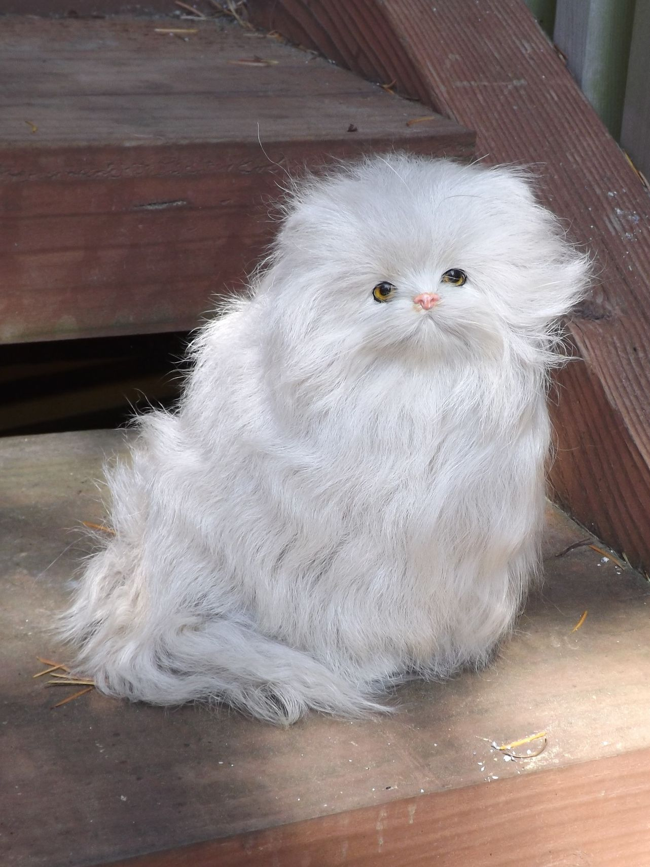 GHC343T-Life-Like-Persian-Cat-Prop-with-Real-Fur