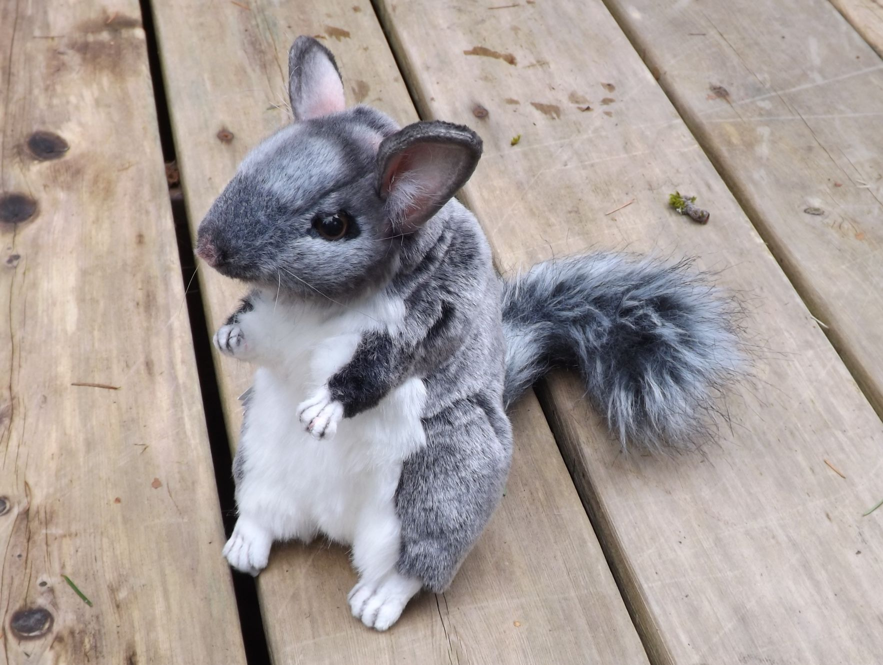 Chinchilla Stuffed Animal – 8″ Plush Chinchilla