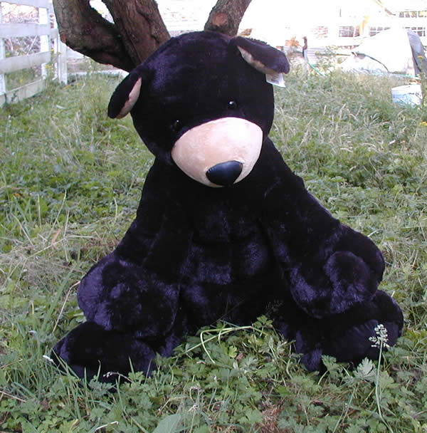 Large Stuffed Black Bears Product Categories