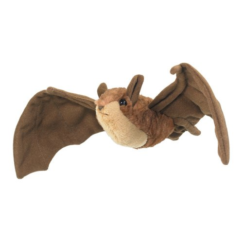 Little-Brown-Bat-WA1250LB