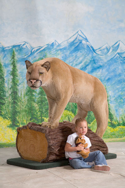 MCG-01-Lifesize-Stuffed-Mountain-Lion
