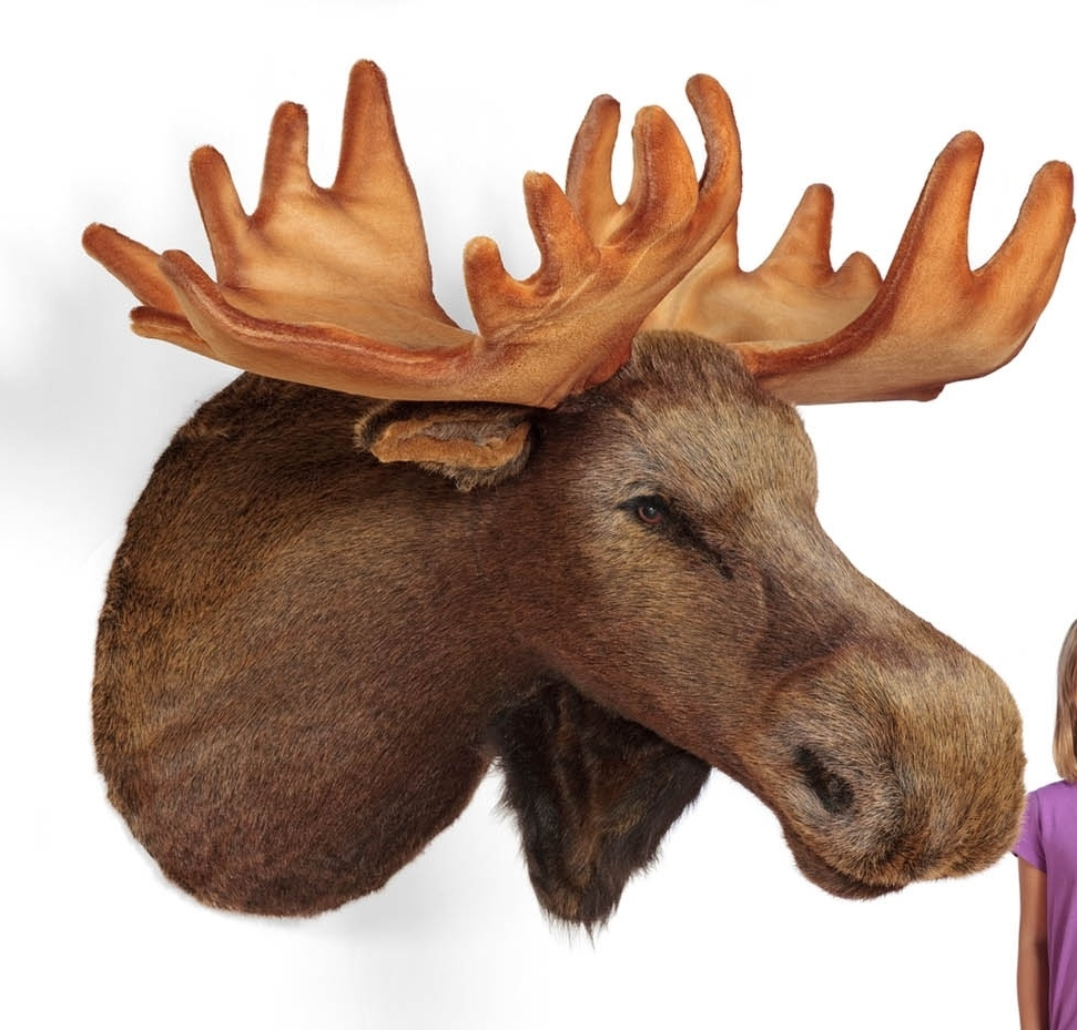 Mounted stuffed faux animal head wall hanging product categories moose head wall hanging lifesize stuffed moose trophy head amipublicfo Gallery