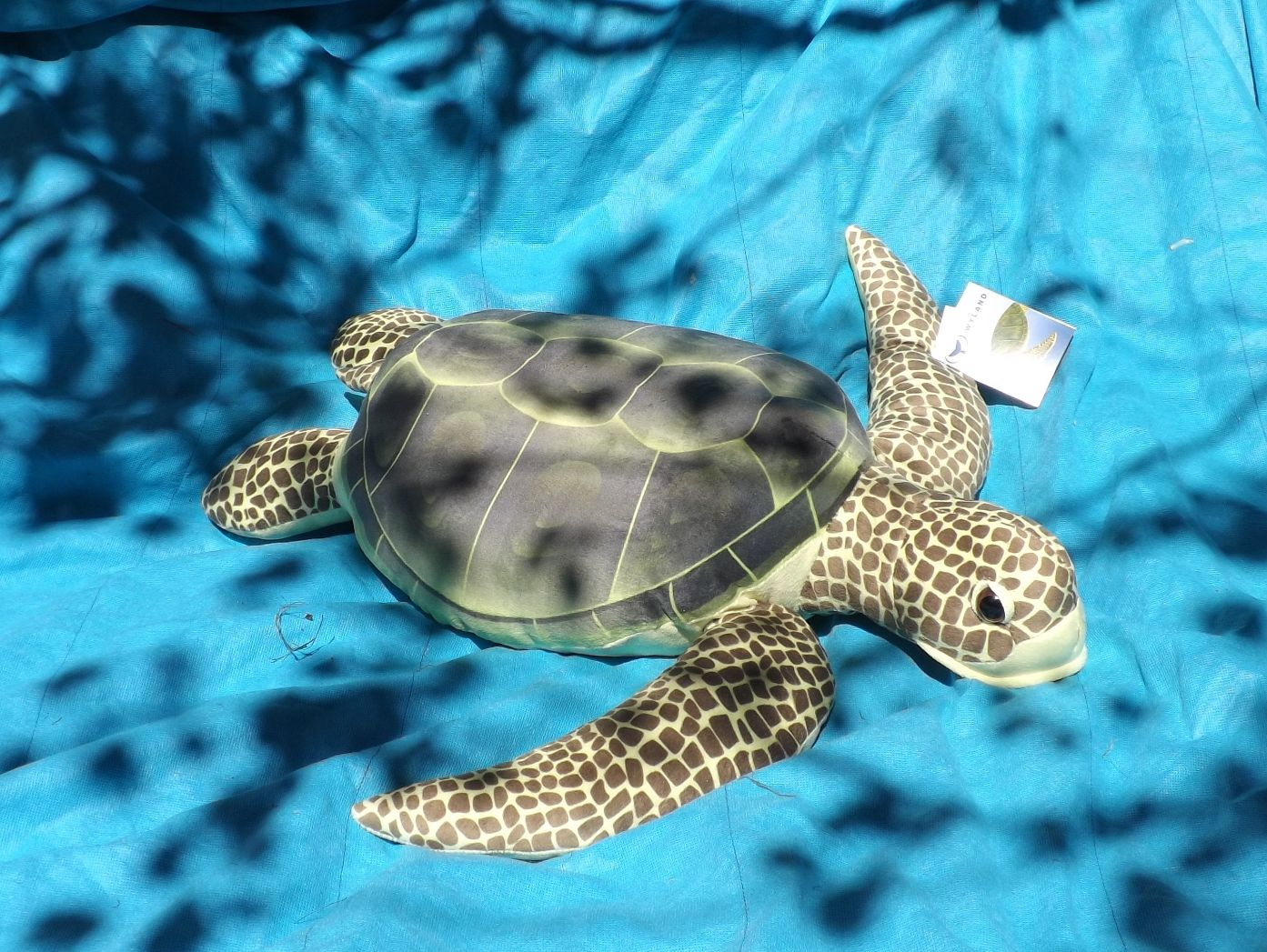 SAHWFST22-Large-Stuffed-Sea-Turtle