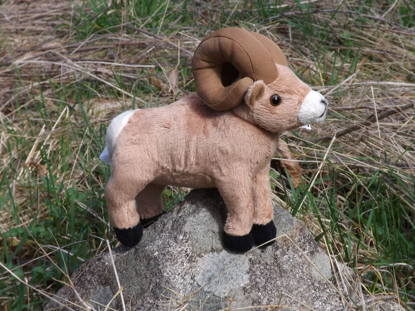 WA1830SBH-Stuffed-Toy-Bighorn-Sheep