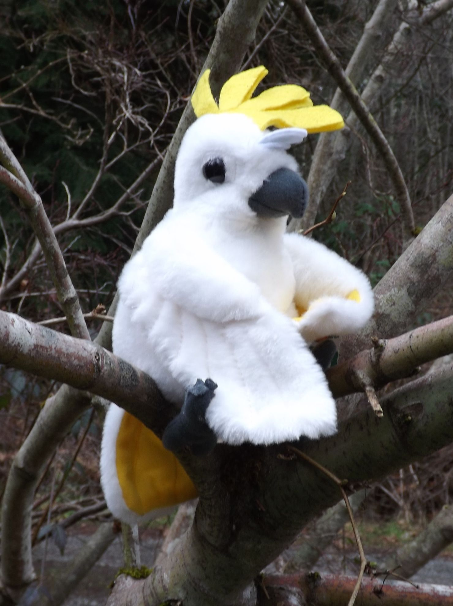 Small Toy Parrots : Cockatoo plush toy bird ″ small stuffed