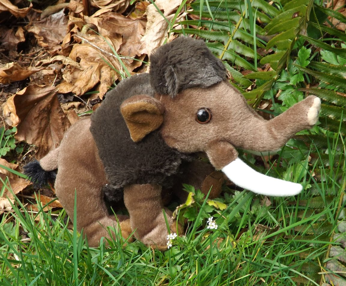 WR10896-Small-Plush-Wooly-Mammoth