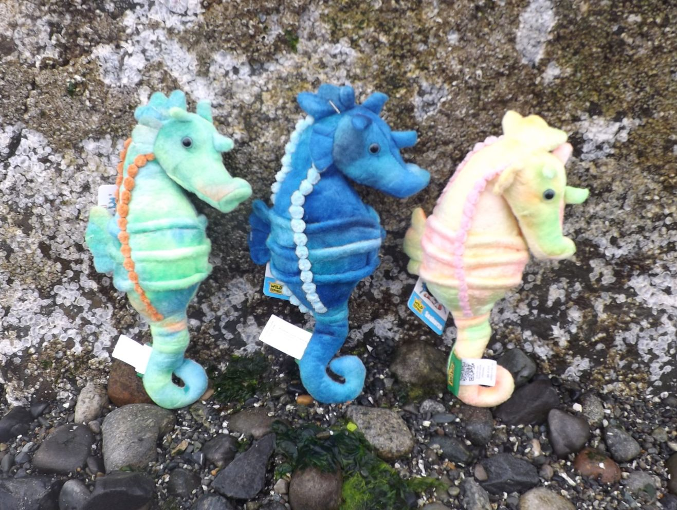 WR12974-Assorted-Set-3-Stuffed-Toy-Seahorses