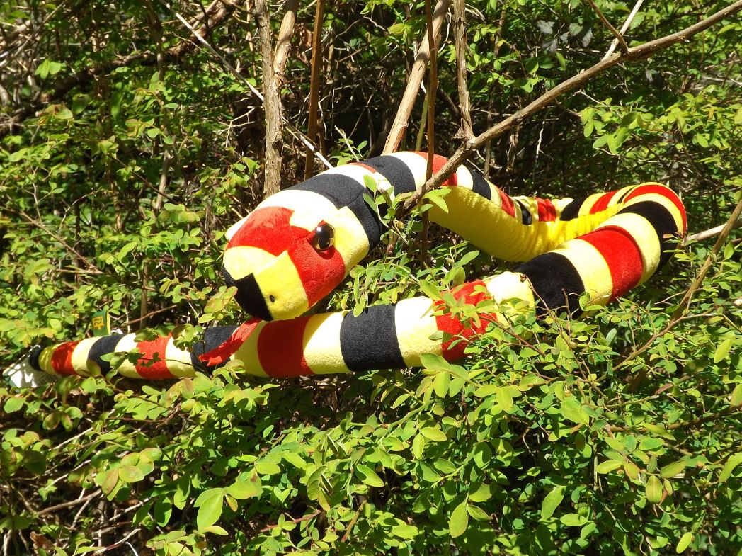 WR13129-Big-Head-Coral-Snake-Plush-Toy