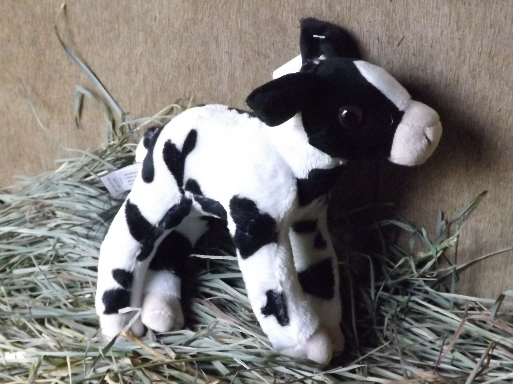 WR13596-Stuffed-Toy-Baby-Calf