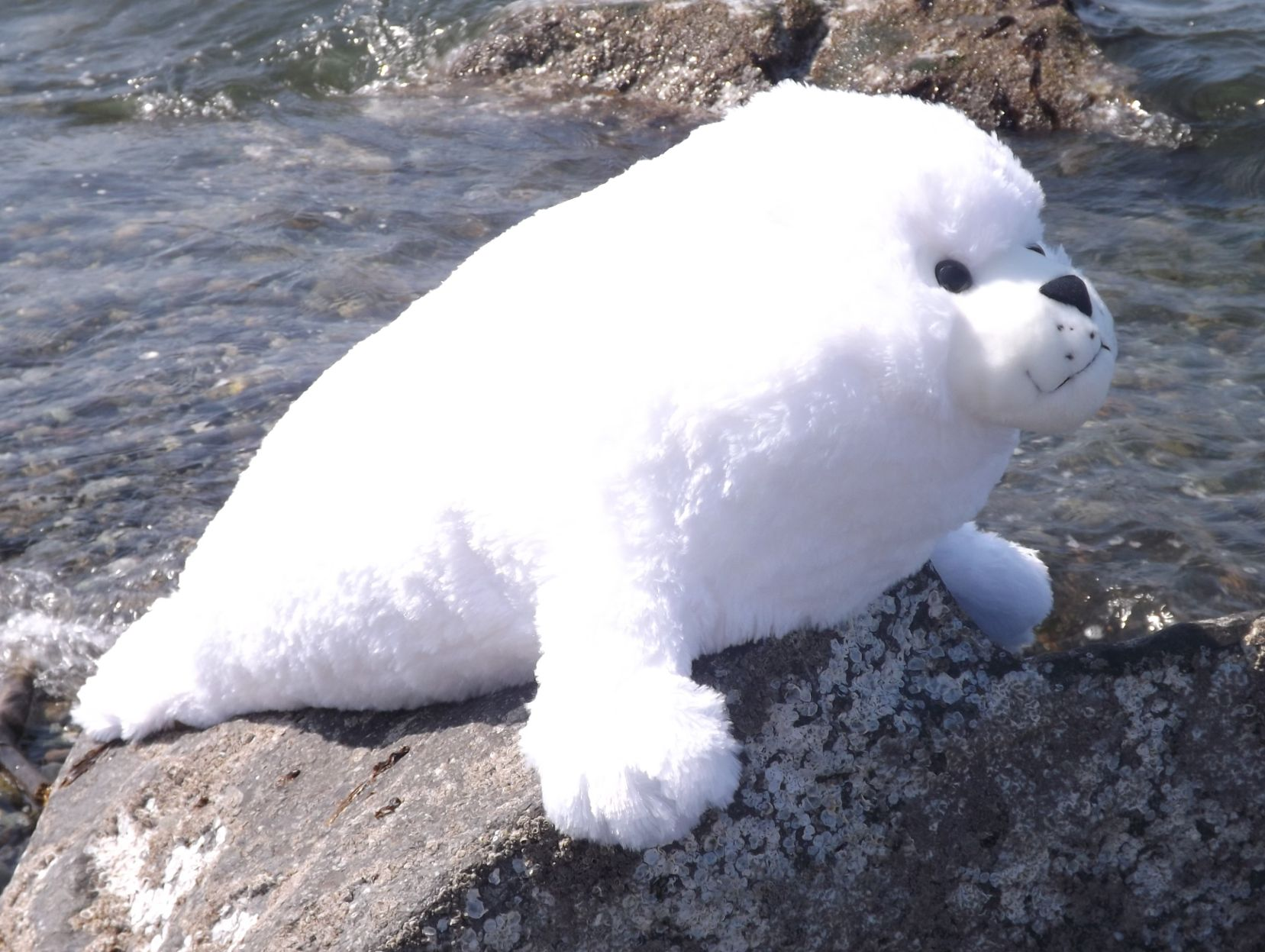 WR16486-Jumbo-Harp-Seal-Pup-Stuffed-Animal
