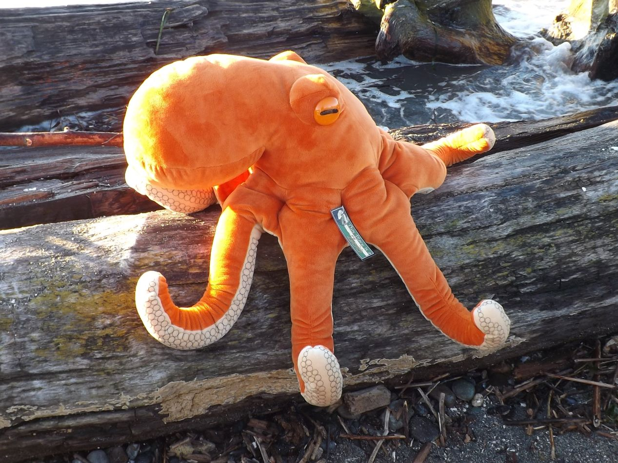 Z3828-Big-Plush-Toy-Octopus-18