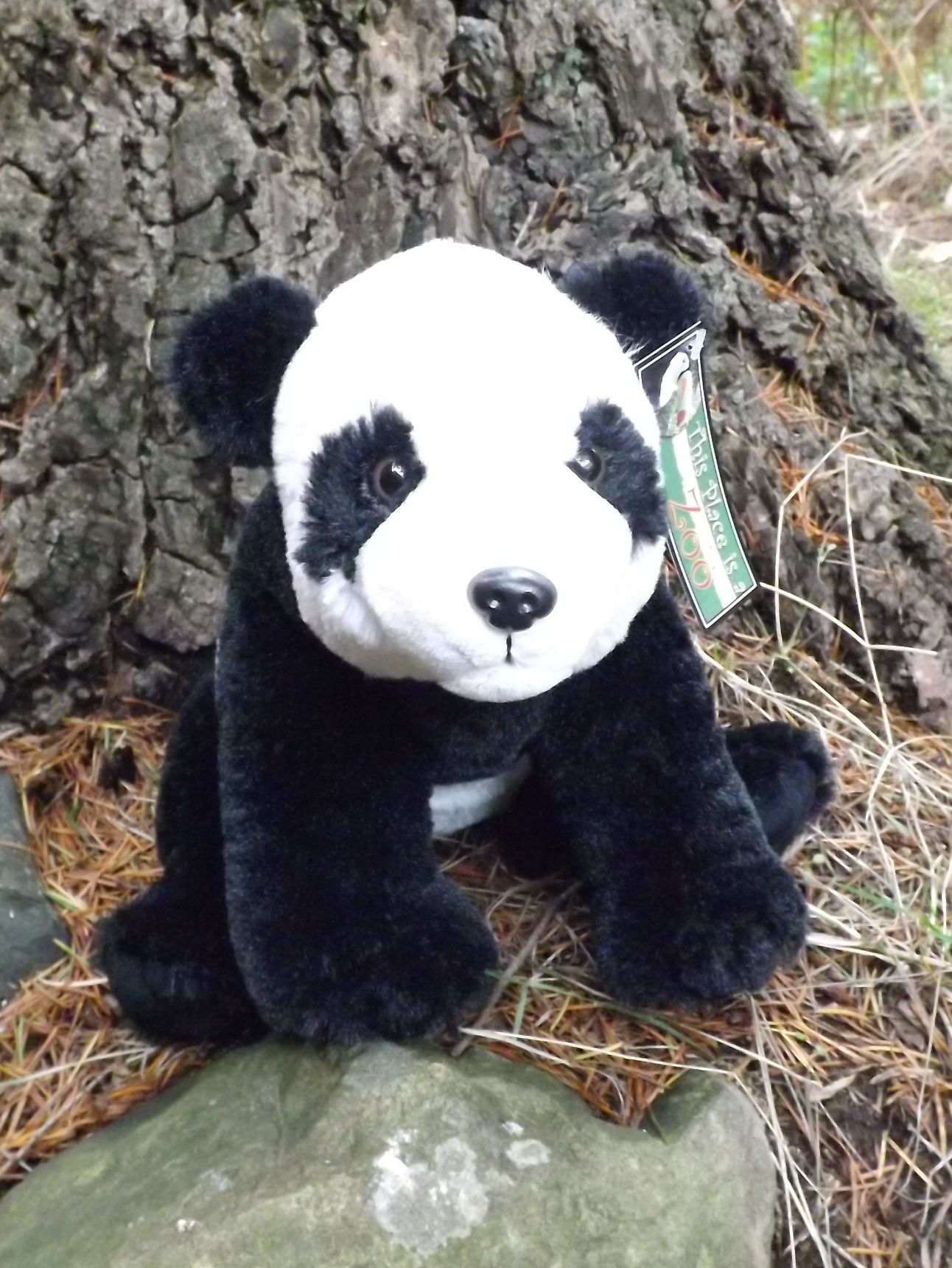 Z3901-Stuffed-Toy-Panda-Bear-10