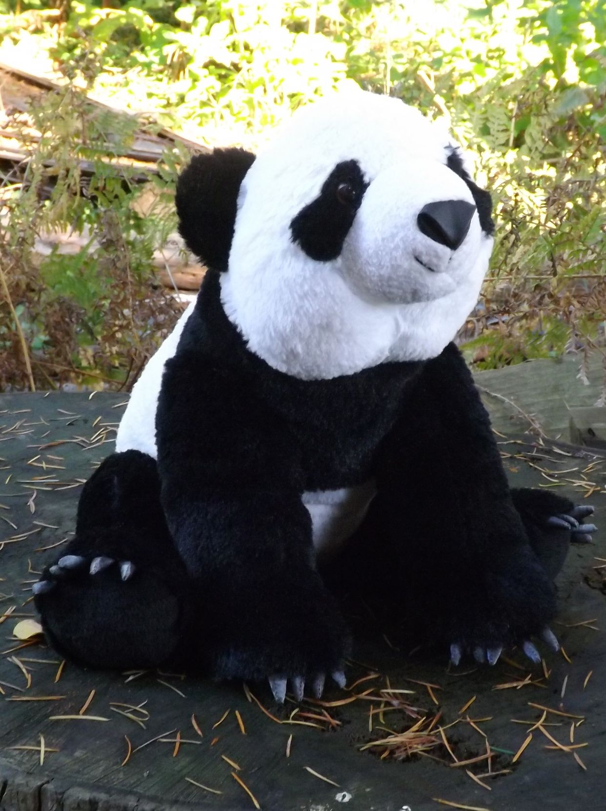 Stuffed Panda Bear 14 Quot Cute Cuddly Plush Toy Pandas