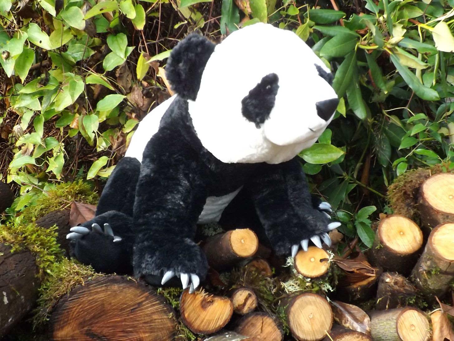 Z3903-Panda-Bear-Stuffed-Animal-with-Claws