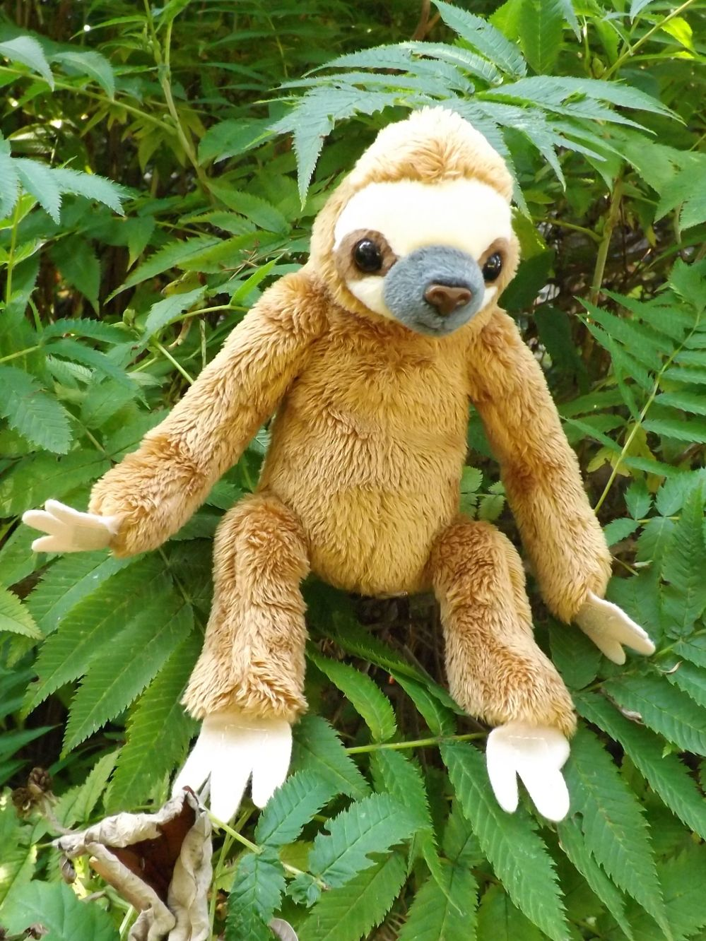 Z4010-Baby-Sloth-Plush-Toy-Animal