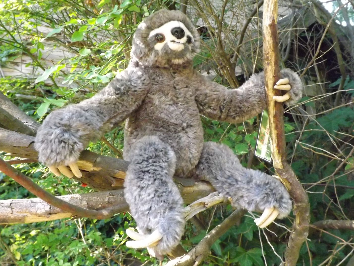 Z4015-Small-Plush-Toy-Sloth-soft