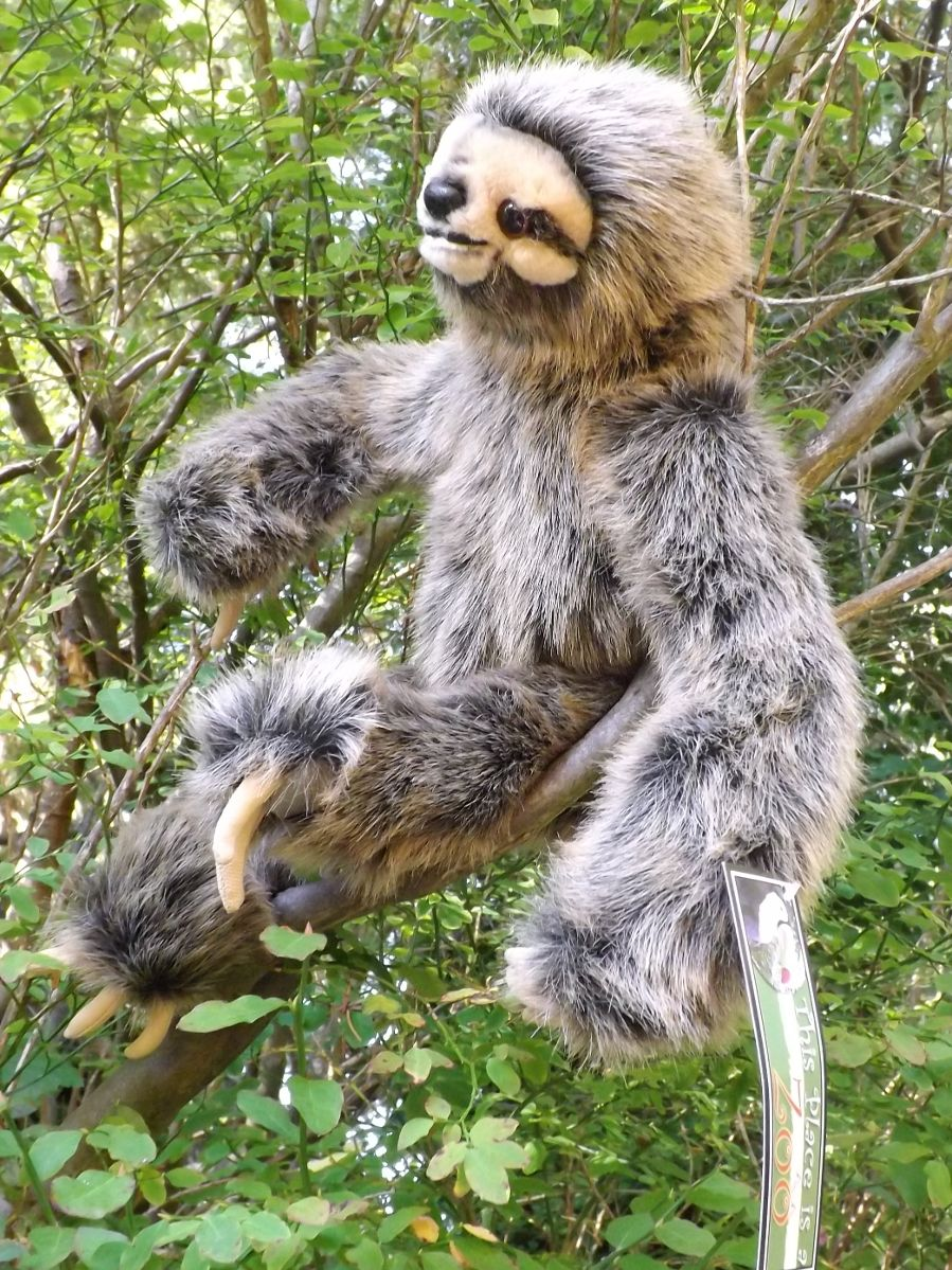 Z4016-Realistic-Sloth-Stuffed-Toy