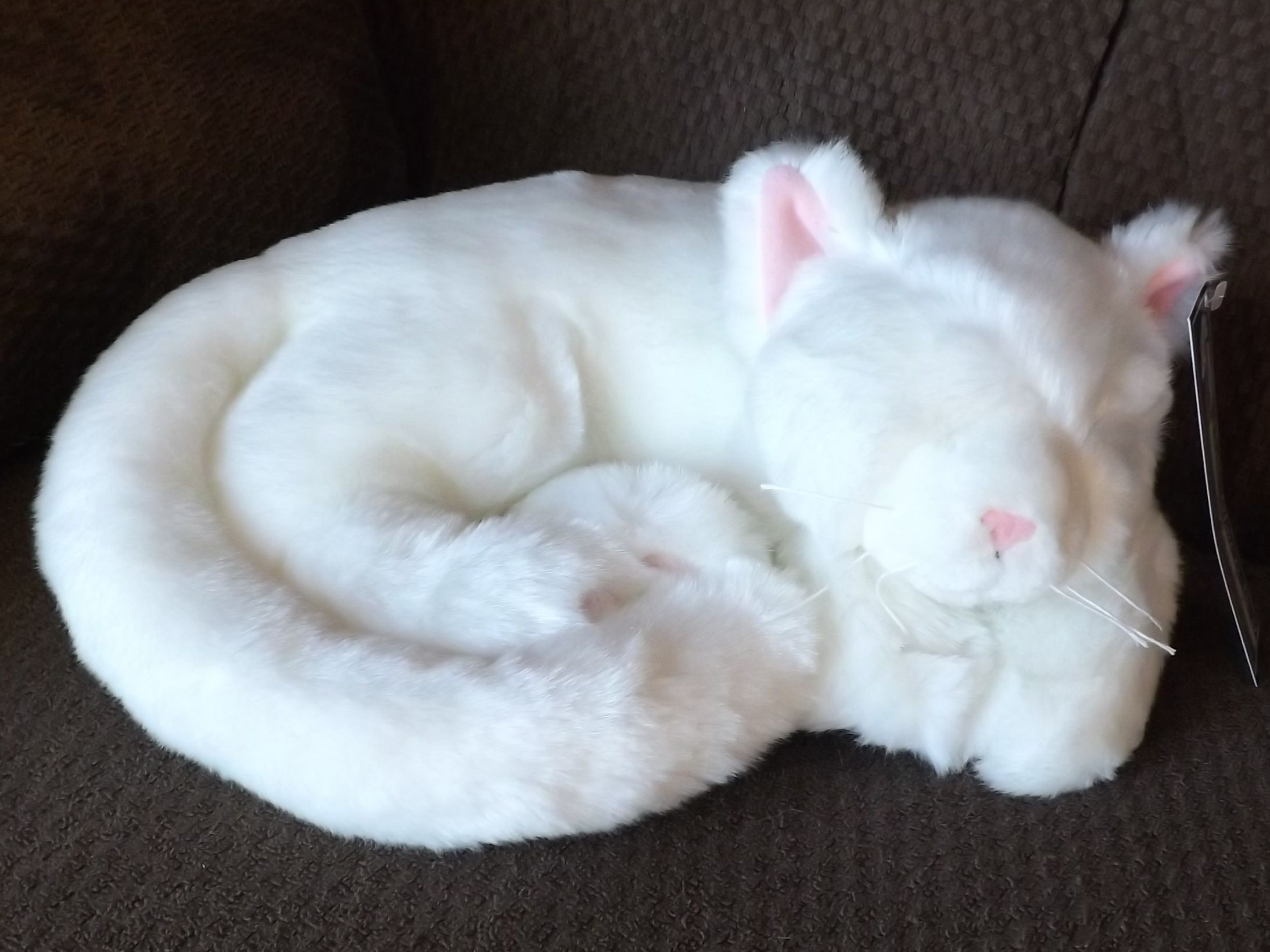 Plush Toy Sleeping White Cat Stuffed Animal Sleeping Cat 11