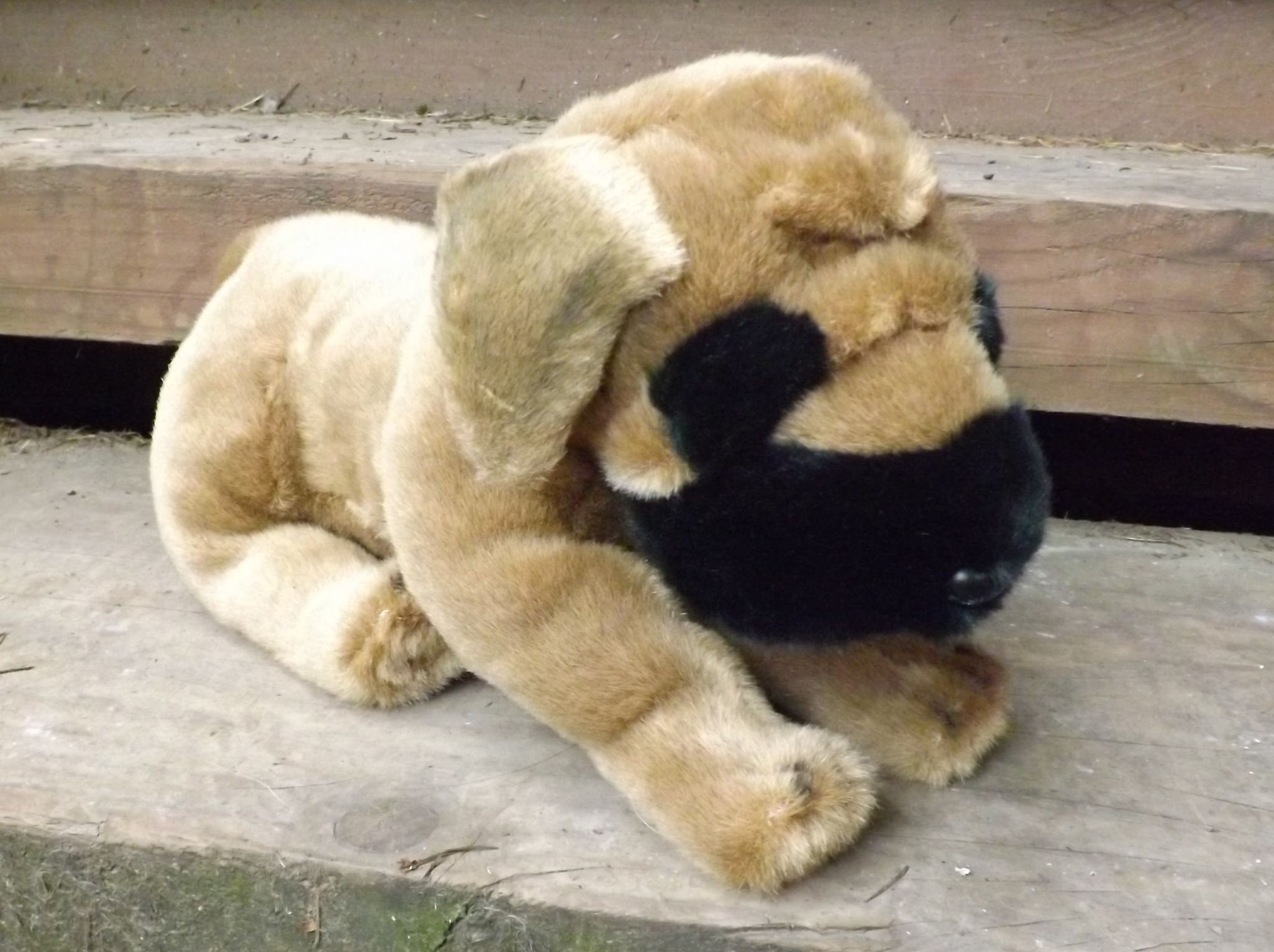 Z4050-Stuffed-Animal-Mastiff-Puppy
