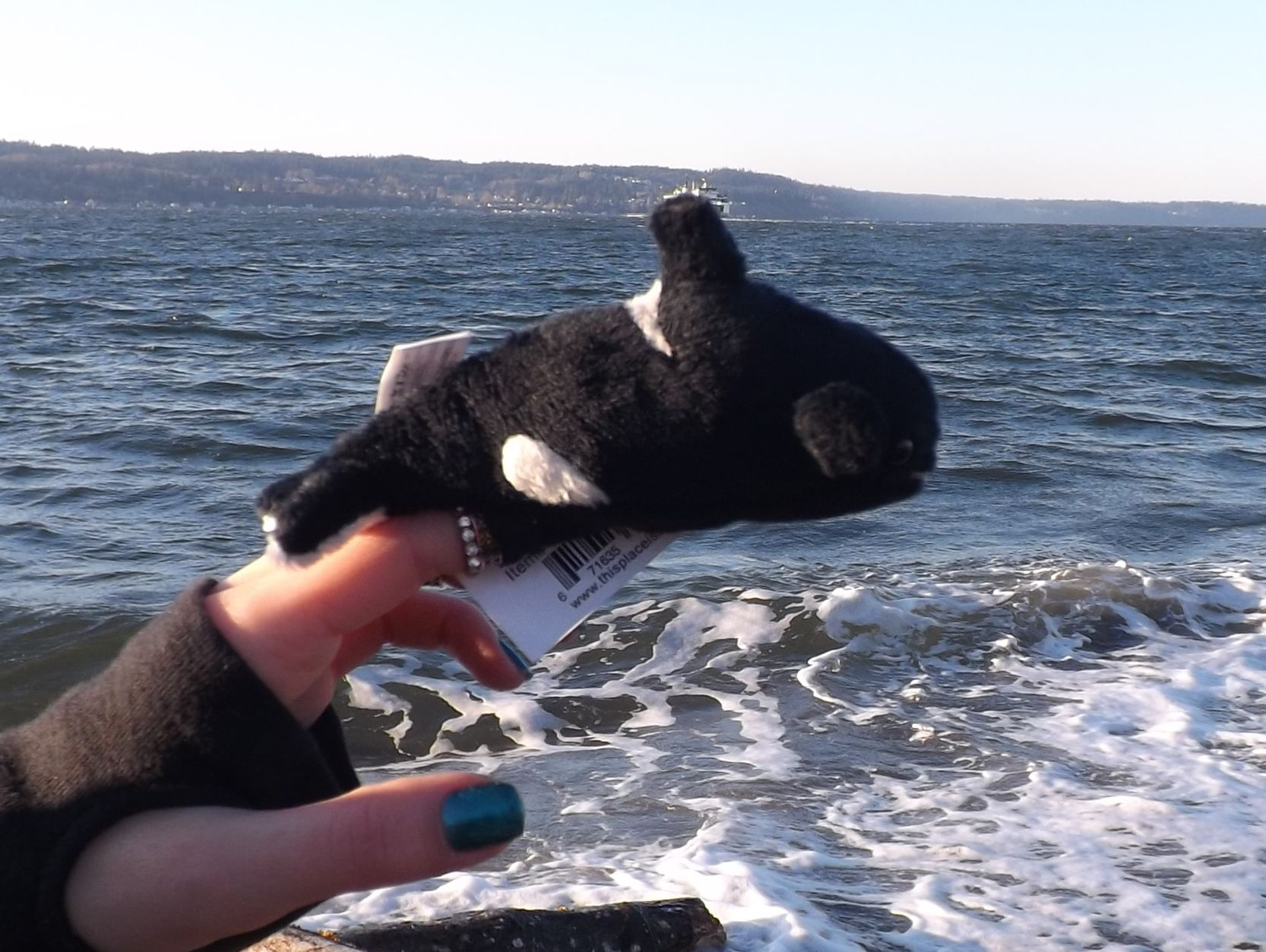 Z4070-Plush-Toy-Orca-Whale-Finger-Puppet