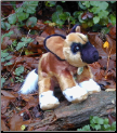Stuffed African Wild Dogs