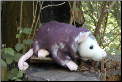 Stuffed Opossum