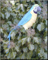 Stuffed Parrots and Macaws