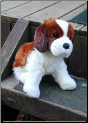Stuffed Saint Bernard