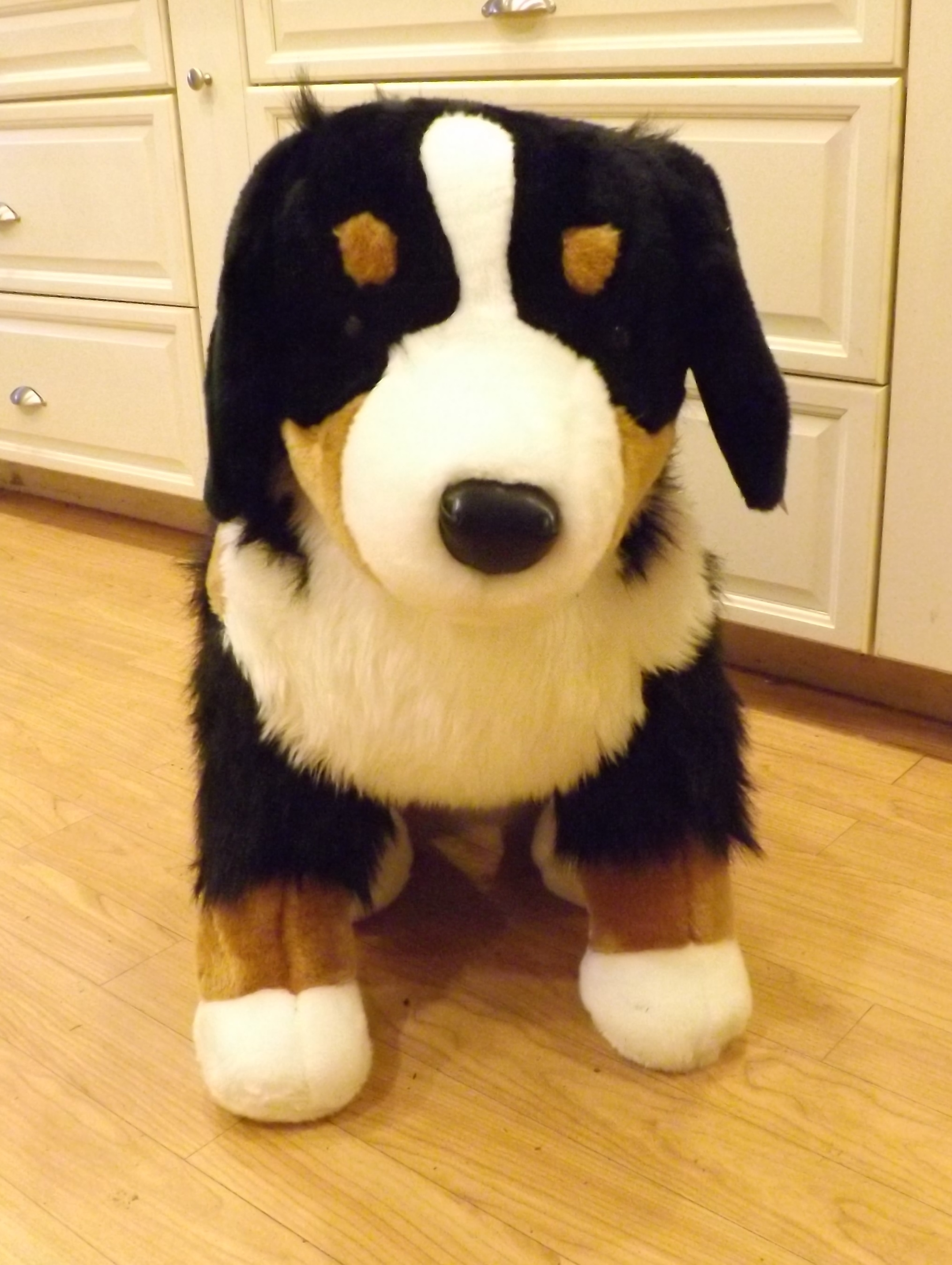 jumbo plush bernese mountain dog